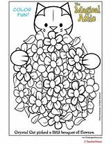 Coloring Bouquet Attic Cat Magical Crystal Flower Teachervision sketch template