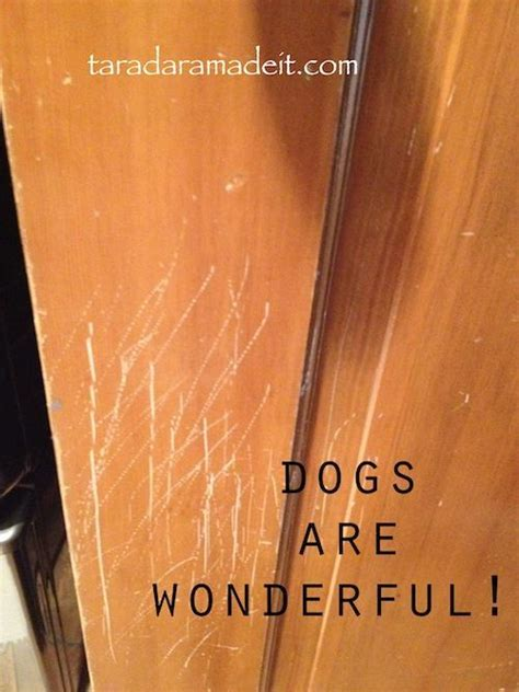 how to fix scratches on kitchen cabinets 17 best ideas about repair scratched wood on 9404