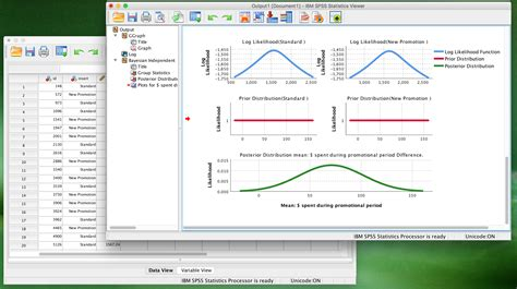 spss data analyst in india customer service tips
