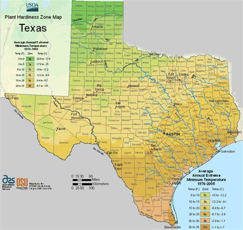 Usda Texas Planting Zones Map For Plant Hardiness