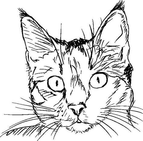 disegni per dipingere ad acquerello testa di gatto dipingere nel 2019 gatti disegni di