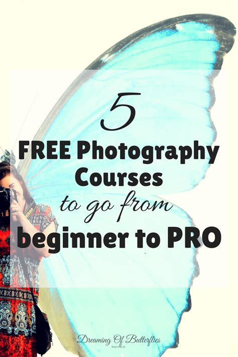Top 5 Free Essential Photography Courses That Will Make