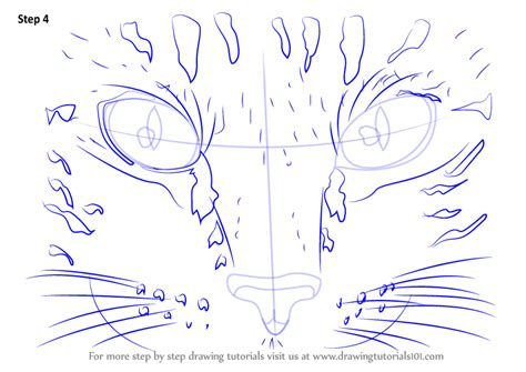 learn   draw cat eyes cats step  step drawing