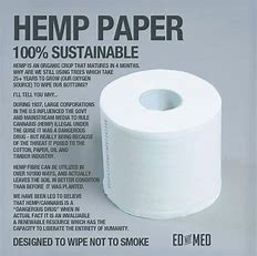 Image result for hemp to make paper