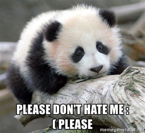 Sad Panda Meme Generator - please don t hate me please sad panda meme generator