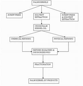 Flow Chart Of Conventional Method Of Palm Kernel Oil Extraction