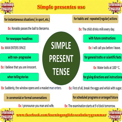 Learning Simple Present Tense Using Pictures  Learning English Vocabulary And Grammar Basic