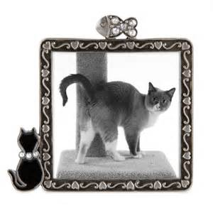 cat picture frames concepts cat picture frame with rhinestones by concepts