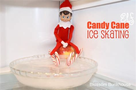 Candy Cane Ice Skating On Bowl Of Frozen Water. Too Cute