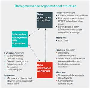 Data Governance Organizational Structure