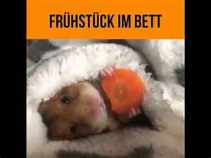 Frühstück Am Bett : fr hst ck im bett youtube ~ A.2002-acura-tl-radio.info Haus und Dekorationen