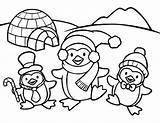 Coloring Penguin Pages sketch template
