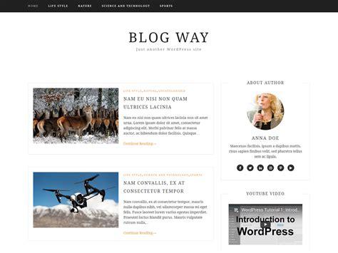 Blog Way Free Professional Theme