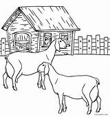 Farm Coloring Animals Animal Pages Cool2bkids Printable Getdrawings Getcolorings Goats sketch template