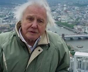 Everyone is full of praise for David Attenborough after ...