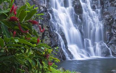 Moving Animated Wallpapers Desktop Waterfall Nature Background