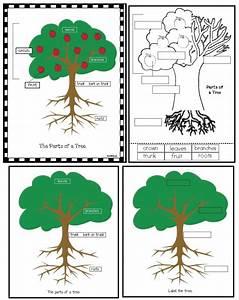 Classroom Freebies: The Seasons of My Apple Tree
