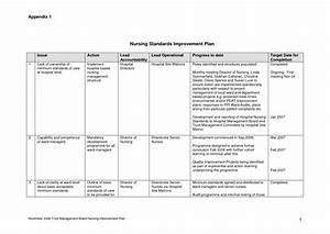 Continuous process improvement plan template pictures to for Nursing action plan template