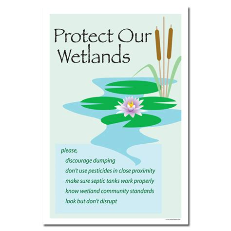 ai wp protect  wetlands water conservation poster
