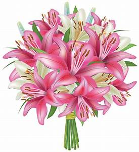 White and Pink Lilies Flowers Bouquet PNG Clipart Image