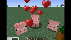 minecraft how to make baby pigs - YouTube