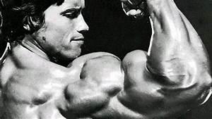 Arnold Schwarzenegger Bodybuilding Biography - About Muscle