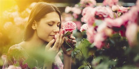 stop  smell  roses  seize  day huffpost