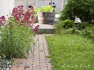 Pflanzen Für Nordseite : nicht hacken bringt segen 10 pflegeleichte pflanzen f r faule ~ Frokenaadalensverden.com Haus und Dekorationen
