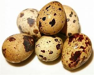 Сырое яйцо натощак от диабета