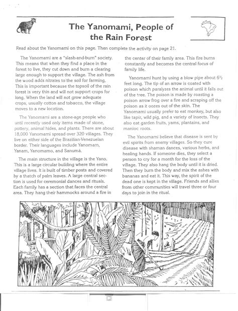 worksheet rainforest layers worksheet grass fedjp