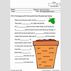 Primaryleapcouk  How Do Plants Grow Worksheet  Plants  Pinterest  More Worksheets And