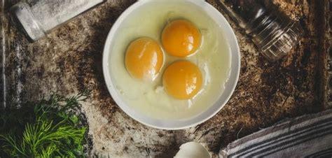 quoi cuisiner avec des oeufs 3 recettes légères à cuisiner avec des jaunes d oeufs le