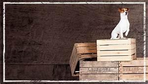 L Art De La Caisse : meuble tv caisse en bois l 39 art de la caisse ~ Carolinahurricanesstore.com Idées de Décoration
