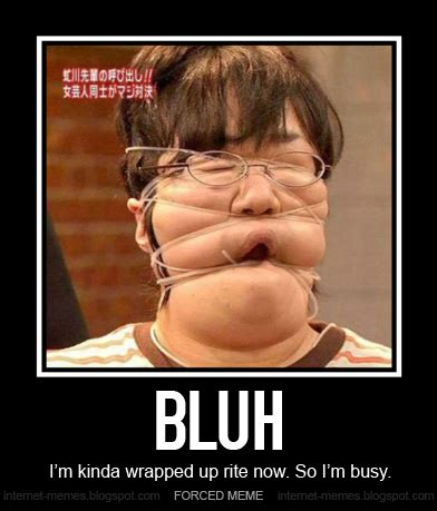 What Is An Internet Meme - bluh i m busy by internet meme on deviantart