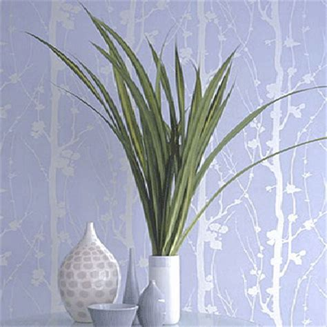 modern wallpapers  leaves beautiful eco style decor