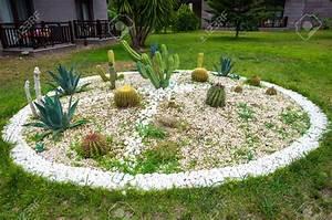 Parterre De Fleur Avec Cailloux : parterre de fleur exotique pivoine etc ~ Melissatoandfro.com Idées de Décoration