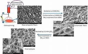 Highly Efficient Nonprecious Metal Catalyst Prepared With