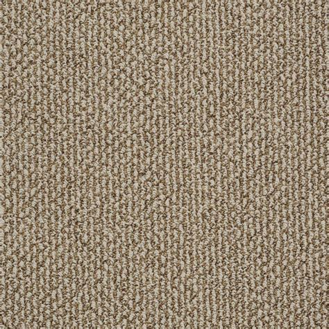 Home Decorators Collection Carpet Home Depot by Home Decorators Collection Braidley B Color