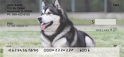 Malamute Alaskan Checks Personal Dog Pchecks Carouselchecks