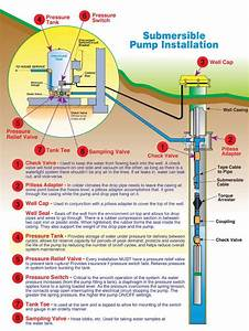 Advance Pump And Filter