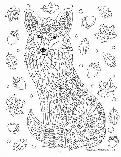 Coloring Fox Adult Pages Animal Fall Adults