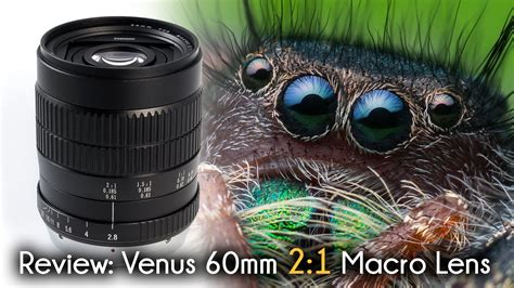 venus  dx mm   super macro