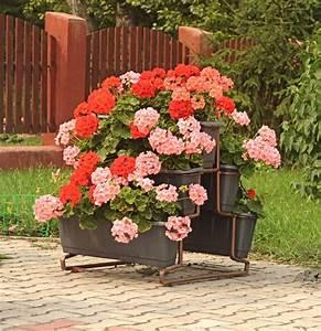 25, Unique, Flower, Planters, And, Pots, Pictures