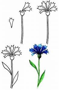 Blumen Erkennen App : auf diese seite k nnen sie blumen malen lernen es ist ganz einfach und mit hilfe diese sch ne ~ Eleganceandgraceweddings.com Haus und Dekorationen