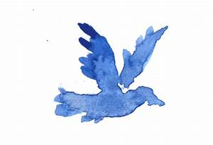 Flying Blue Bird GIF - Find & Share on GIPHY