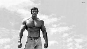 Arnold Schwarzenegger Wallpapers High Resolution and ...