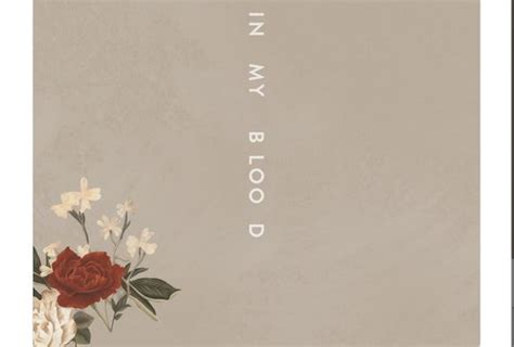 Shawn Mendes, In My Blood