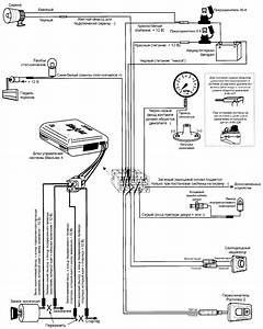 Clifford Blackjax Wiring Diagram   32 Wiring Diagram