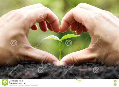 nature  nurture venn diagram stock photography