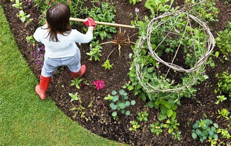 best compost for vegetable garden best garden fertilizer for vegetables talentneeds